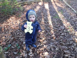 Outdoors maths in the woods