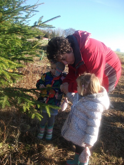 Choosing our Christmas tree