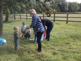 Fruit collecting in the Orchard
